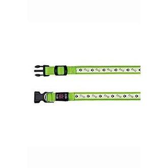 PSI - Obojek USB svítící 30-40cm/25mm S-M zelený TR*