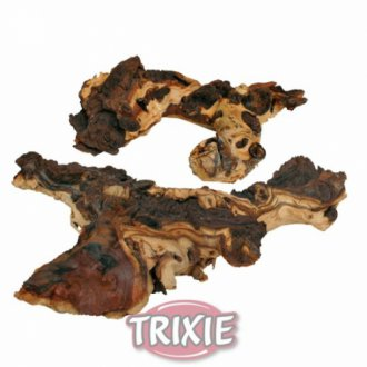 AKVARISTIKA - AKCE - Mopani, africký kořen M, L