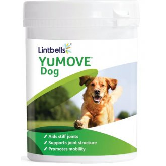 IMPORT (samohyl) - Lintbells YuMOVE pro psy 300 žvýkacích tablet