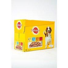 Pedigree kapsa 12pack kuře/jehně/drůbež/hovězí 100g