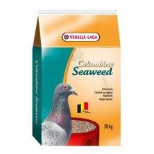 VL Colombine Seaweed pro holuby 20kg