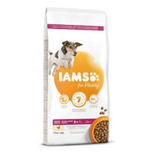 Iams Dog Senior Small&Medium Chicken 12kg