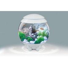 Akvárium BIORB Halo s barevným LED 15l bílé