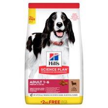 Hill´s Can.Dry SP Adult Medium Lamb&Rice 12+2kg