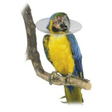 Límec ochranný plastový Bird Collar pro ptáky 10cm