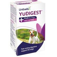 Lintbells YuDIGEST Plus 6 sáčků
