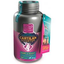 Cartilan inflastop 100tbl