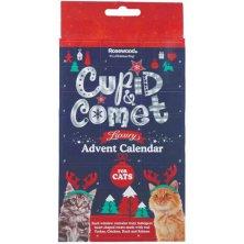 Rosewood advetní kalendář pro kočky - expirace