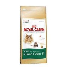 Royal canin Breed  Feline Maine Coon  400g