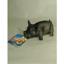 Hračka pes Prase domácí pískací latex 17cm TR